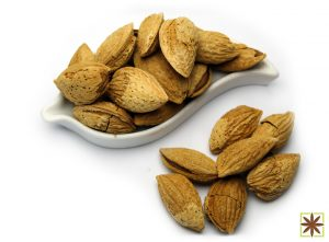 Buy American Almond with Shell