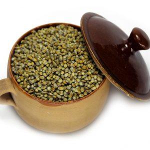 Buy Pearl Millet Bajra